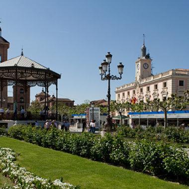 Excursiones culturales colegios por Alcalá de Henares